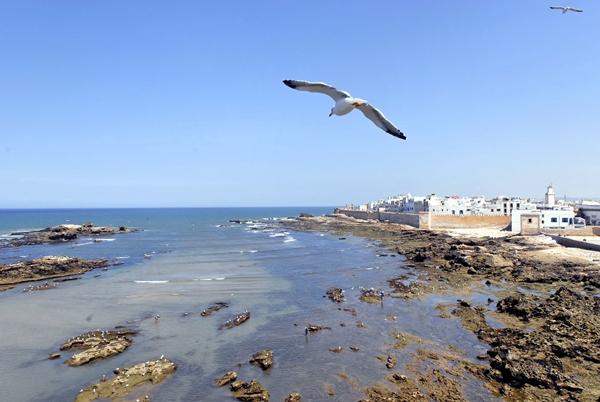 Essaouira-121
