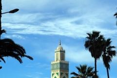 Divers-Maroc-20