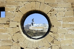 Essaouira-153