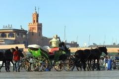 Marrakech-232