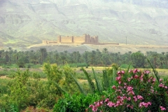 Sud-Maroc-8